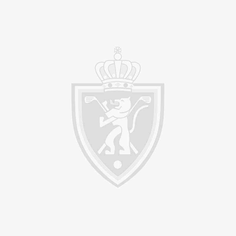 Ondervoorzitter KBGF en Voorzitter Golf Vlaanderen